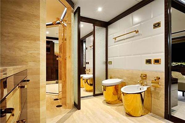 Custom Color Tecma Toilets Thetford Marine